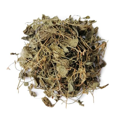 Шамбала трава